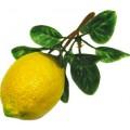 Муляж Лимон на ветке 0201081